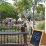 Κυριακή στη Γη – ΕU Green Week 2020 &  Open Farm Days